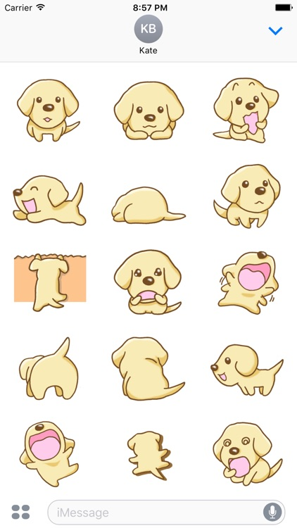 Labrador Retriever Dog Stickers for iMessage
