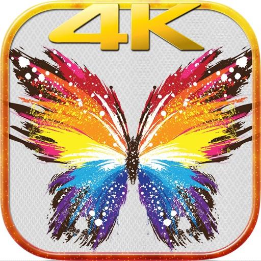Abstract Wallpaper.s– 4K UHD Wallpaper Make.r Free By