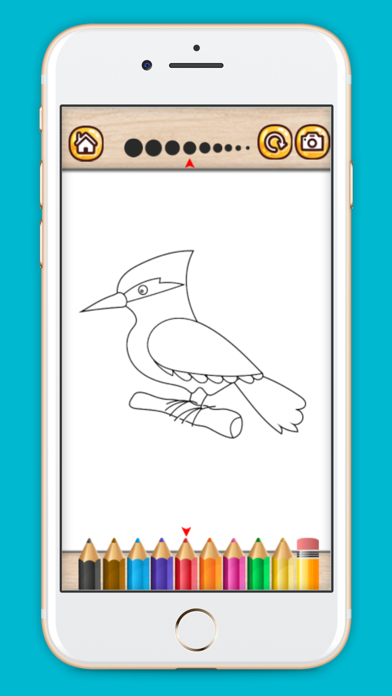 Bird coloring book drawing painting games for kids screenshot three