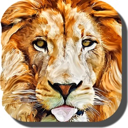 Lion Wallpapers – Fun Awesome Animal Backgrounds