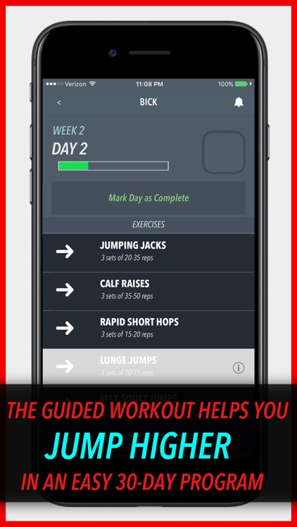 Vertical Leap Doctor - Increase your Vertical Jump