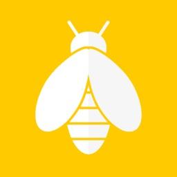 Beesize - BBW Dating