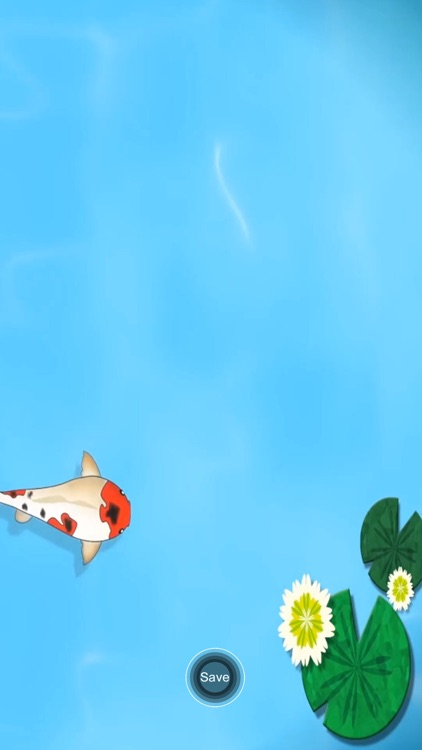 Koi Pond Live HD screenshot-3