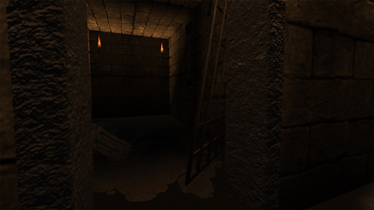 VR Walk in Dungeon screenshot-3