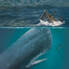 Moby Dick - sync transcript
