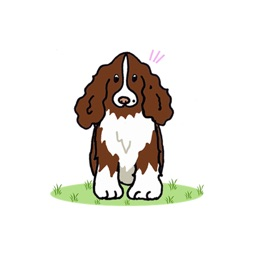 English Springer Spaniel - Dog Sticker Pack