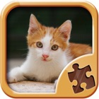 Cute Kitty Jigsaw Puzzle Games - Kitten Puzzles icon