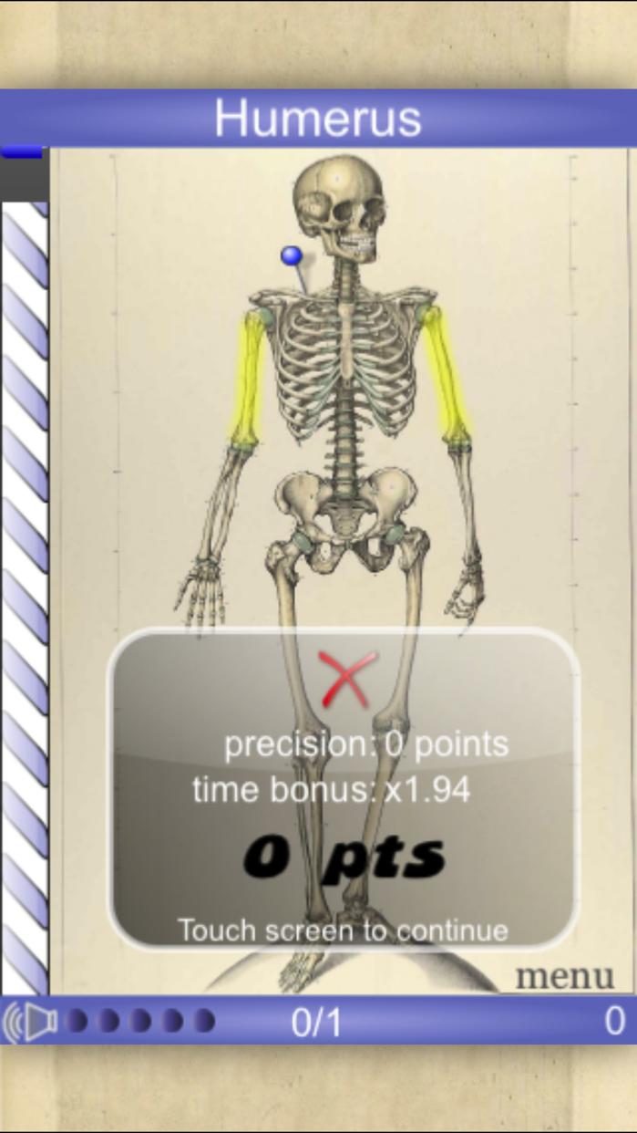 Speed Bones Lite (Quiz) Screenshot