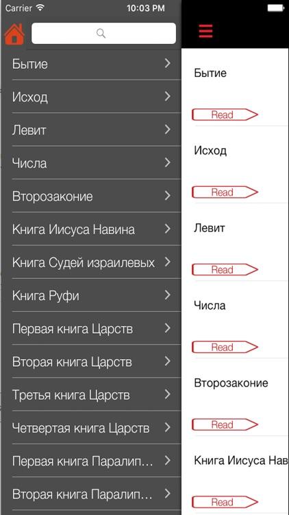 Russian Bible - Holy SYNOD Version screenshot-3