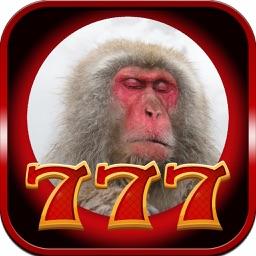 Monkey Slot : 777 Jackpot Casino
