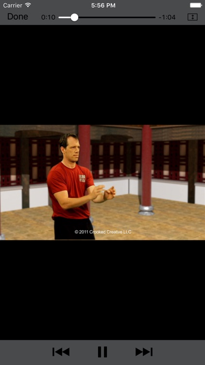 Wing Chun Masters 2 - HD screenshot-3