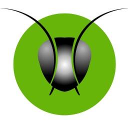 Ant Invoice
