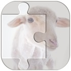 Real Animal Puzzle Jigsaw icon