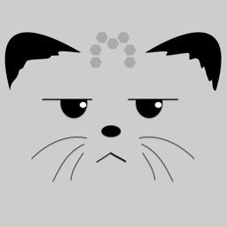 Nonchalant Kitten