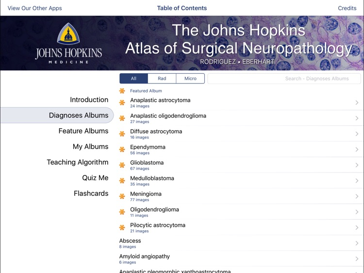 Johns Hopkins Atlas of Surgical Neuropathology