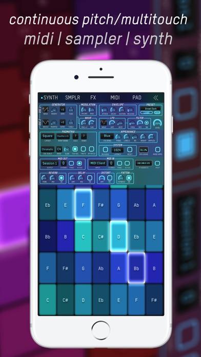 expressionPad MIDI/Synth screenshot 1