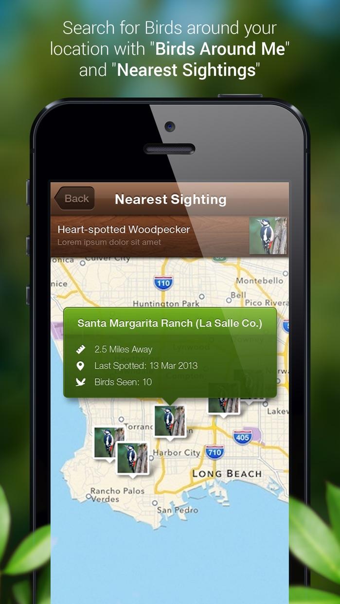 Bird Calls - Bird Song & Guide Screenshot