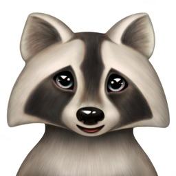 Boo the Raccoon by Watty