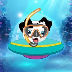 Activities of Aqua Paw - Swimming Patrol