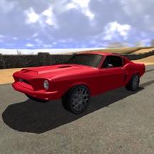 Rally Drive Pro