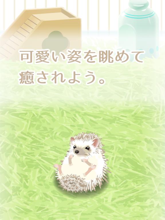 癒しのハリネズミ育成ゲームのおすすめ画像3