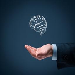 Emotional intelligence Guide