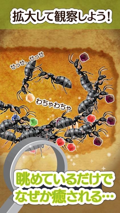 アリの巣コロニー - ほのぼの観察育成ゲーム screenshot-3