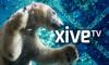 XiveTV Documentaries