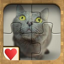 Jigsaw Solitaire Cute