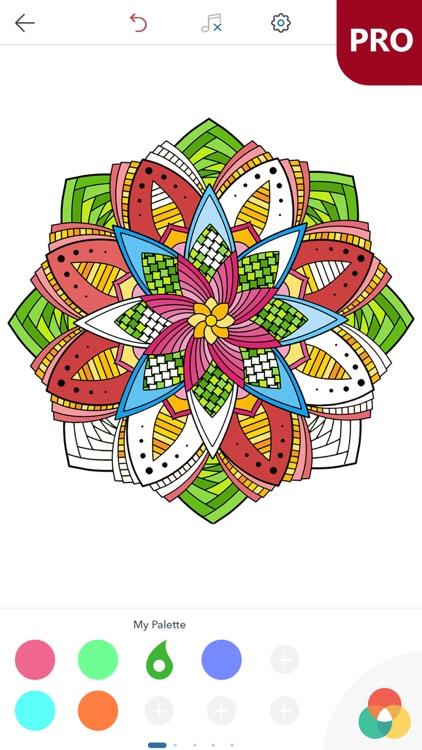 Magic Mandalas PRO - Coloring Book for Adults screenshot-4