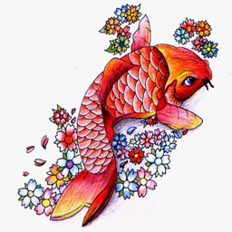 Japanese Koi Fish Wallpapers HD- Quotes and Art