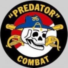Activities of Predator Combat Games