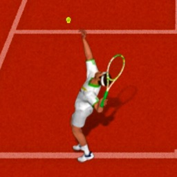 Tennis Open Championship - 3D Tennis Game