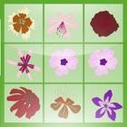 Farm Link - Blossom Crush Puzzle icon