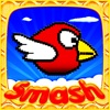 Smash Birds 游戏 免费 免费游戏 热门游戏 儿童游戏