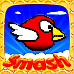 Smash Birds: Fun and Cool for Boys Girls and Kids