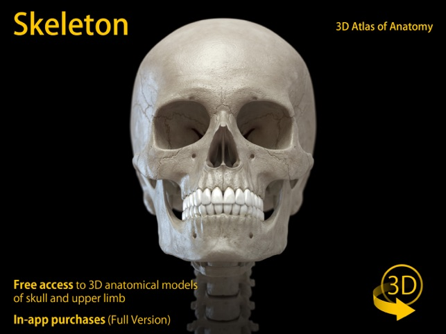 Skeleton 3D Anatomy on the App Store