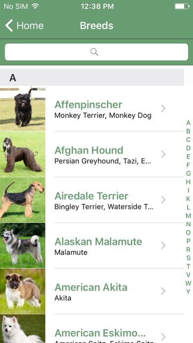 Baixar What Dog A Microsoft Garage Project para Android