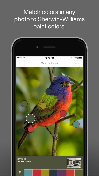 ColorSnap® Visualizer for iPhone screenshot-0