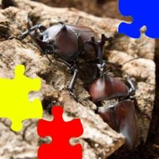 Activities of Rhinoceros Beetle Jigsaw Puzzle