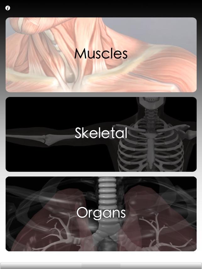 Anatomie Quiz Pro im App Store