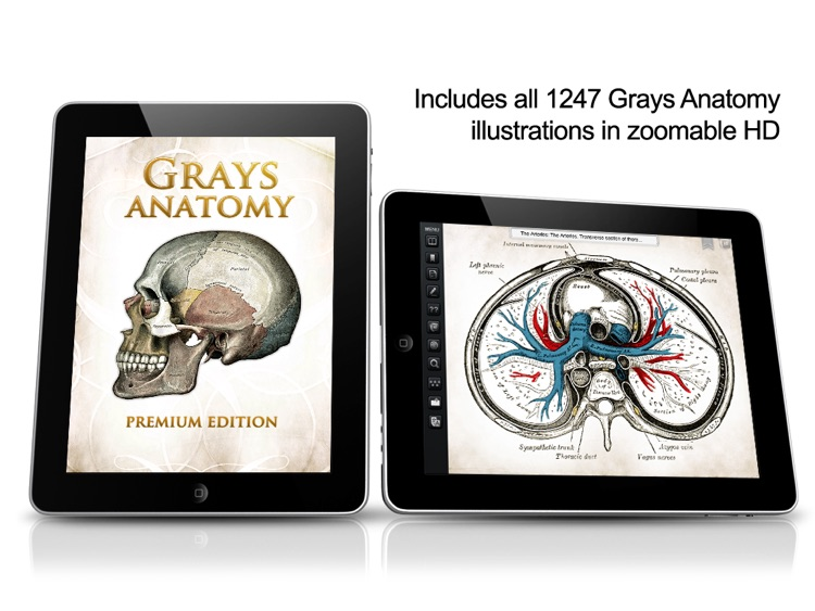 Gray's Anatomy Premium for iPad screenshot-0