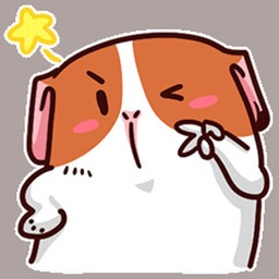 Cute Fat Puppy Stickers For iMessage