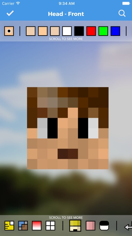 Skins Pro Creator for Minecraft screenshot-0