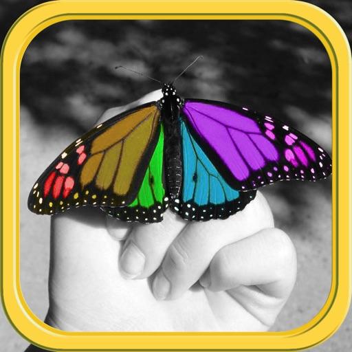 Color Editor - Photo Recolor & Background Eraser