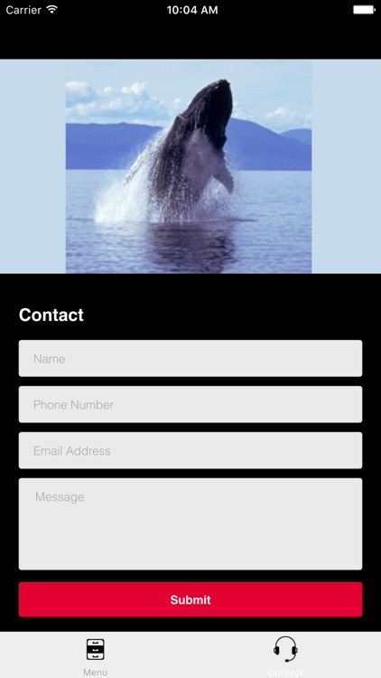 Humpback Whale Sounds! screenshot-4