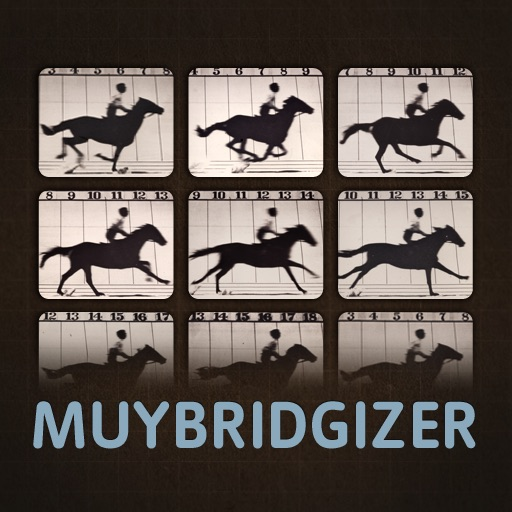 Muybridgizer icon