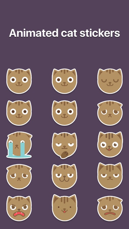 MoJi Cat - Animated Sticker Pack (Cool Kitty)