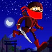 Codes for Ninja Mission Hack