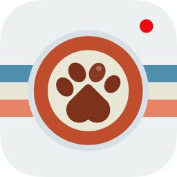 Ícone do app Instapet - Rede Social pro seu Pet